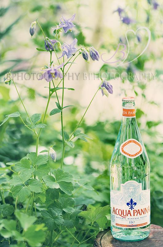 BPhotography-AquaPannaStill Water