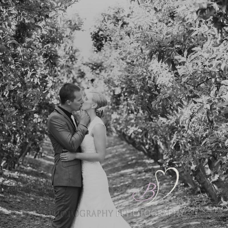 BPhotography_Belinda_Fettke_Wedding_Tasmania_Grindelwald058