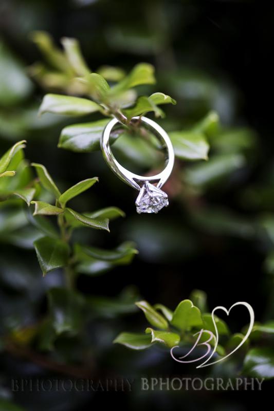BPhotography_Belinda_Fettke_Jon_Jarvela_Wedding_Tasmania027