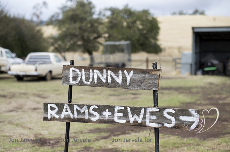 Jon_Jarvela_BPhotography_Wedding_Tasmania005