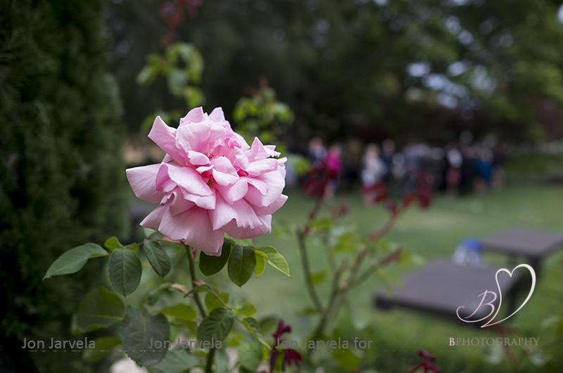 Jon_Jarvela_BPhotography_Wedding_Tasmania026