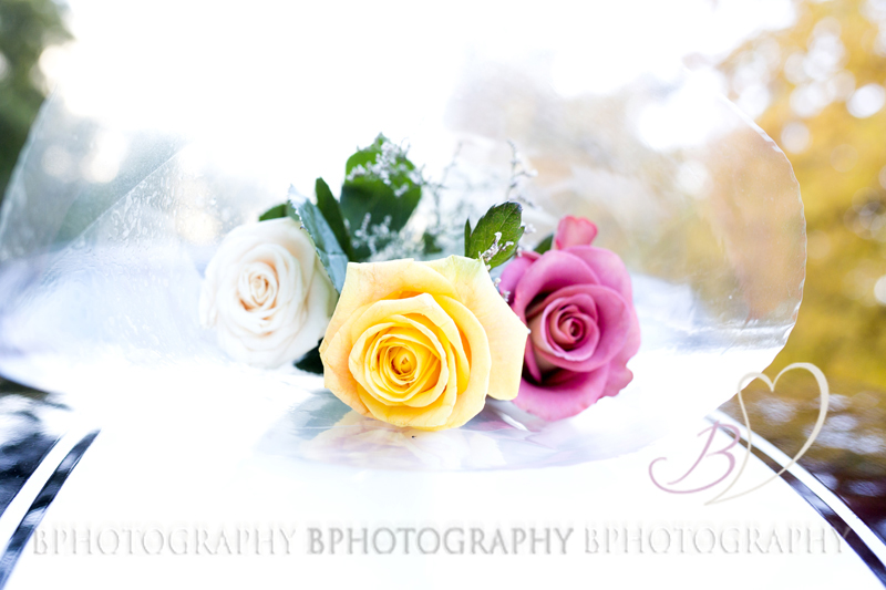 BPhotography-Milly075