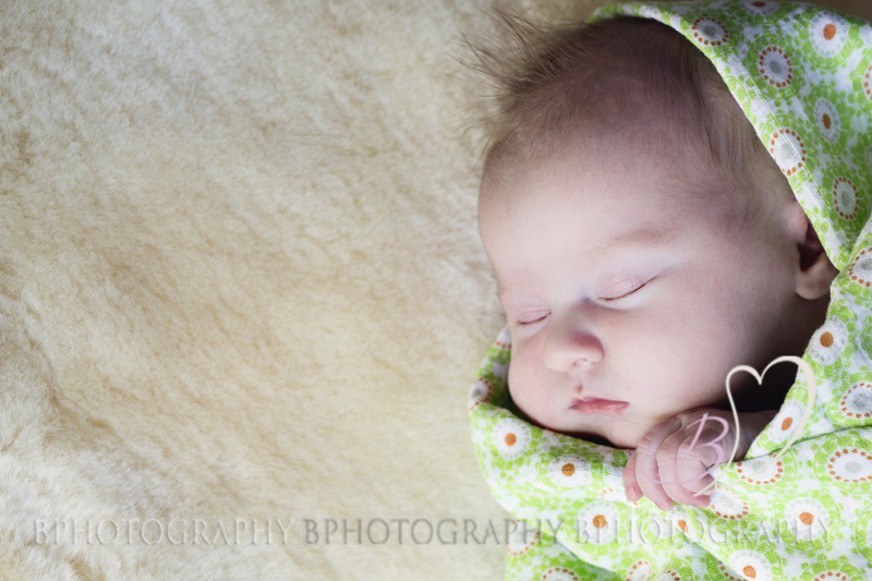 Newborn Portrait_BPhotography