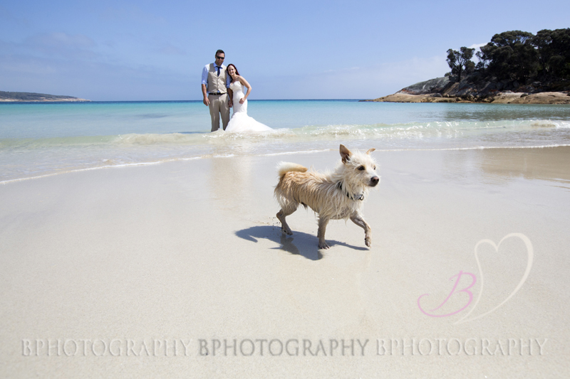 AdobeBridgeBatchRenameTemp12BPhotography_Trash the Dress_ Flinders Island020