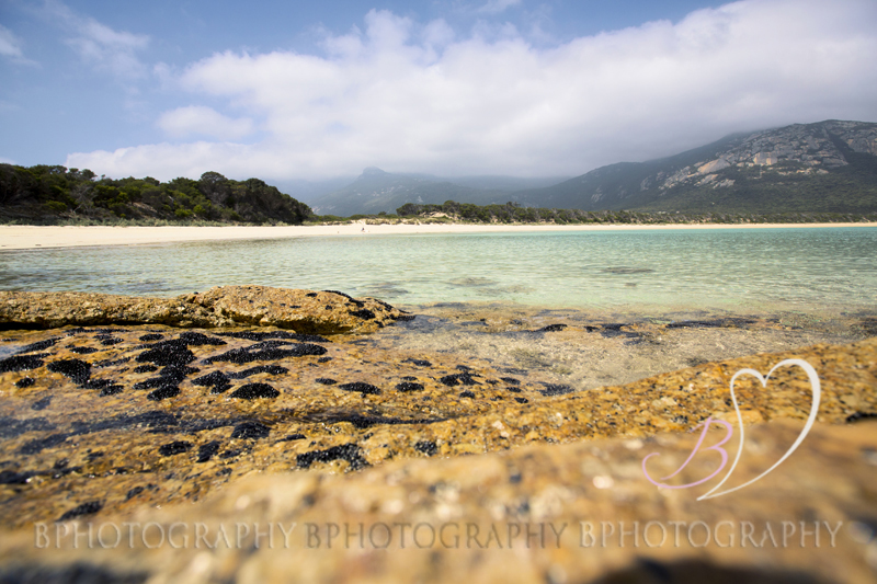 AdobeBridgeBatchRenameTemp8BPhotography_Trash the Dress_ Flinders Island016